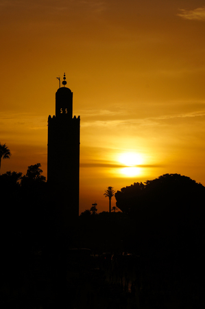 berber: The Koutobia mosque in sunset, Marrakech,North Africa