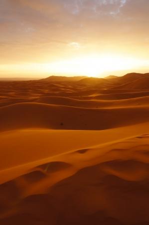 Sahara desert at sunrise in Morocco,Northern Africa photo