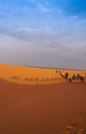 Group of tourists going for a camel trip in the middle of Sahara desert,Morocco photo