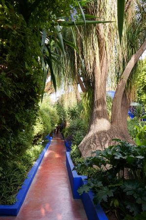 Jardin Majorelle Garden in Marrakesh, Morocco, Africa photo
