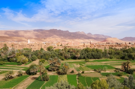 Beautiful oasis in Tineghir,Morocco,Northern Africa photo