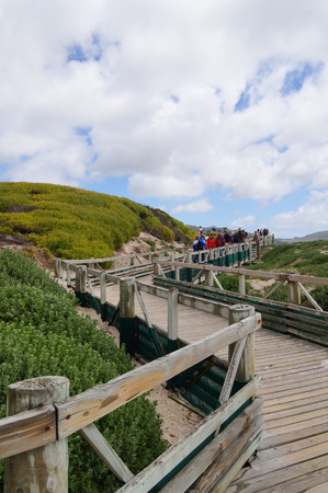 penguins on beach: Boulders Beach,South Africa-22 October 2016:Unidentified tourists going to visit African penguins colony on Boulders Beach, Simons Town near Cape Town, South Africa. Editorial