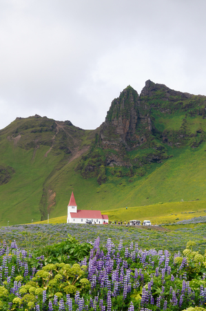 Rural village church surrounded by green mountains and purple and white mountain lupines Stock Photo