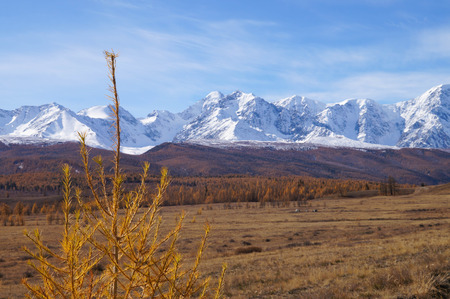 Beautiful Kurai Steppe in the morning,Russia.The North- Chuysky range is a mountain range in Kosh-Agach district of Altai Republic,Altai Mountain,Siberia,Russia.