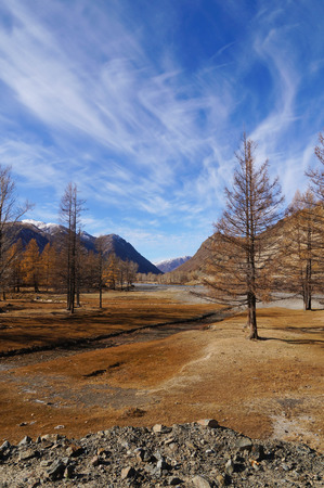 Beautiful view near Kurai Steppe in Altai Republic,Russia. Stock Photo