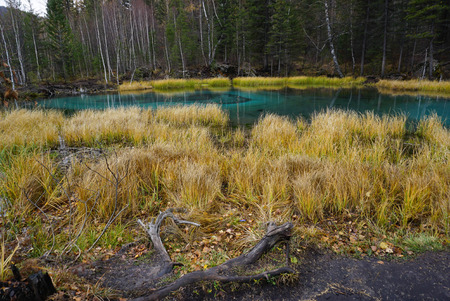 Beautiful Geyser Lake with blue clay in autumn, Altai Republic, Russia.