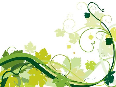 美しい旋回つるを葉します。