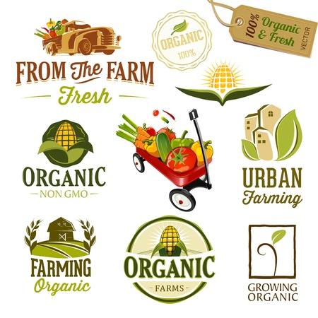 corn field: Set of Fresh Organic labels and elements