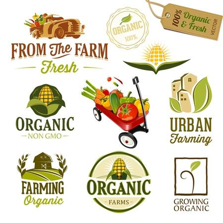 Set van verse biologische labels en elementen Stock Illustratie
