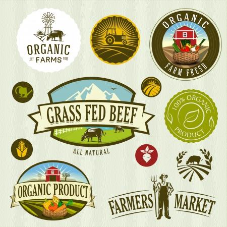 organic   farm Zdjęcie Seryjne - 24679767
