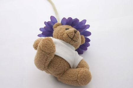 ted: Teddy bear and blue flower