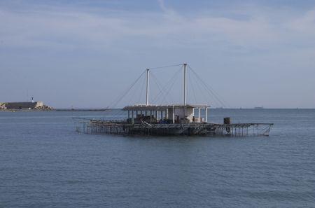 musandam: one farm of mussel in the sea