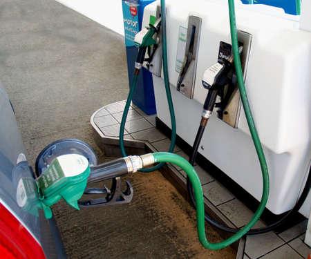 Green Petrol Snake or Pipe