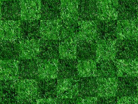 Chequered Grass Stock Photo