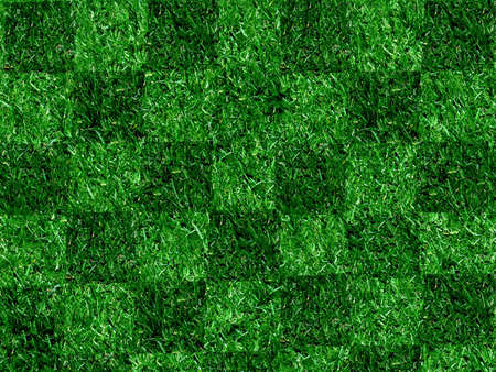 Geblokt Grass