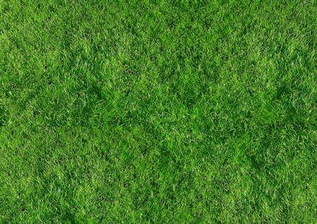 Achtergrond gras voor onbeperkte gebruik