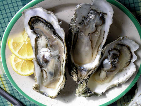 Three Jumbo Oysters for stimulation