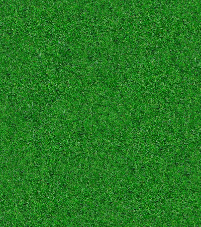 Artificial Grass for indoor sports