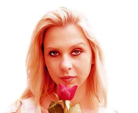 english rose: Perfect English Rose
