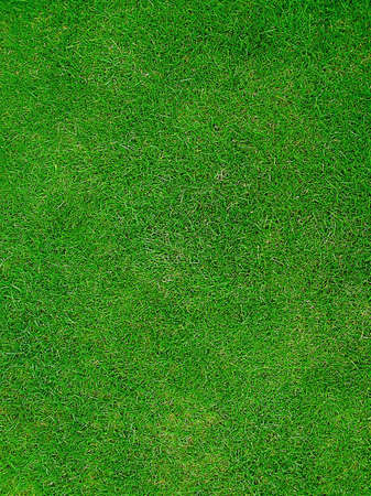 Green Grass giving a sports pitch field