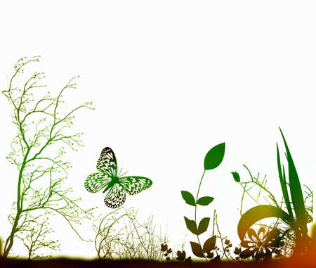 Arty Background with nature plants and butterfly Stock Photo - 3439150