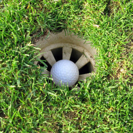 In the hole with grass filling it too photo