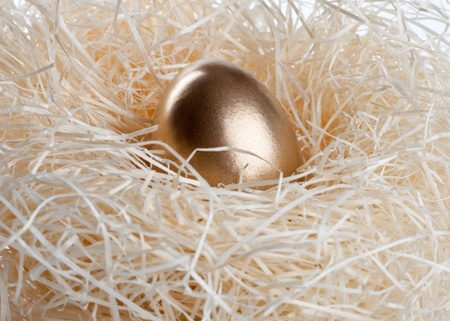 Gold egg in nest photo