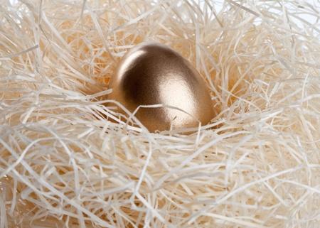 Gold egg in nest Standard-Bild