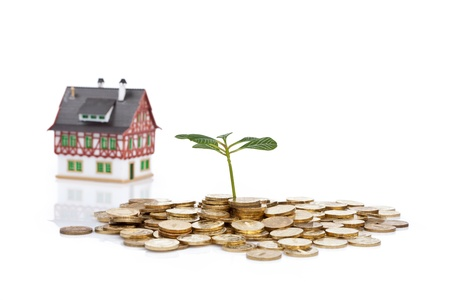 green plant, coins and little house on white photo