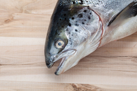 salmon fish on wooden plate