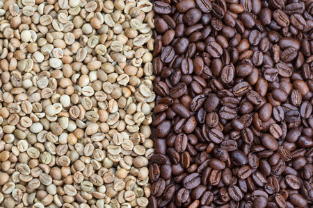 Green and roasted coffe beans, on the left grade Uganda robusta, on the right Peru arabica Reklamní fotografie
