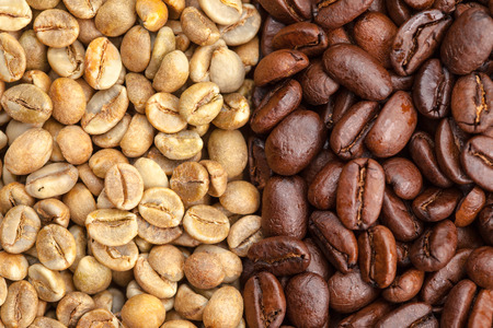 Green and roasted coffee beans, on the left grade Uganda robusta, on the right Peru arabica