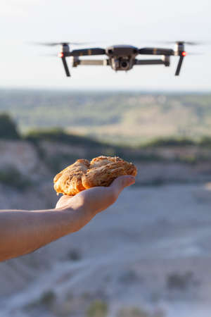 the drone flies to the bun on an outstretched arm. A funny photo similar to birds Standard-Bild