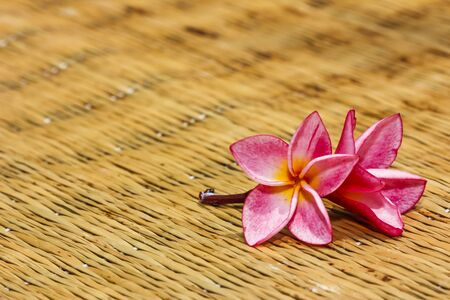 Pink frangipani flowers with mat in background. photo