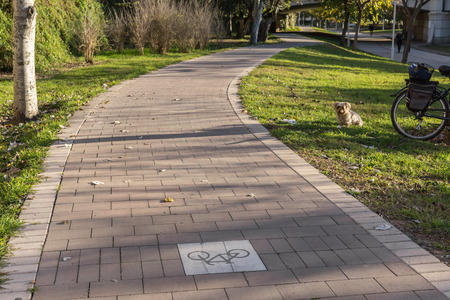 cycleway signposted a ground bikeway for cyclists only. Bike lane between trees in Jardin del Turia in Valencia Spain Stock Photo