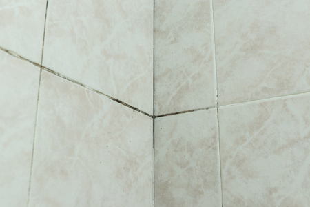 Mold tile joints corner with black fungus due to condensation moisture problem Stock Photo