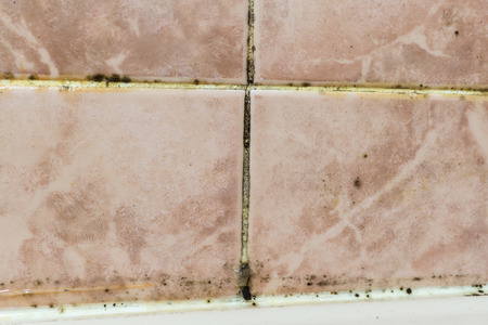 Black mold fungus growing in damp poorly ventilated bath areas, in detail an unmaintained bathroom. Mold tile joints with fungus due to condensation moisture problem Stock Photo