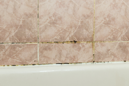 mildew: Black mold fungus growing in damp poorly ventilated bath areas, in detail an unmaintained bathroom