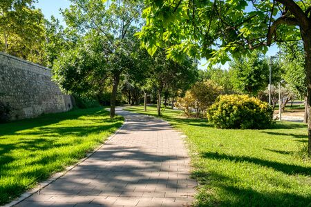 Bike lane between trees Turia Garden in Valencia cycleway a ground bikeway for cyclists only Spain