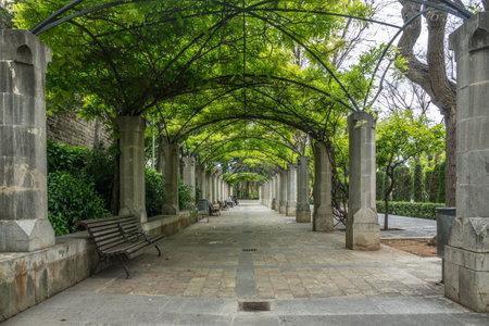 SHort del Rei gardens, leisure area Park to walk Palma de Mallorca. Balearic islands of Spain