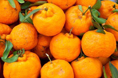 mandarine: The group of Mandarine orange Stock Photo