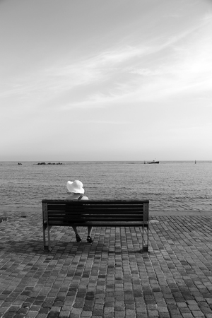 bench alone: Lady sat alone on a wooden bench looking out to sea