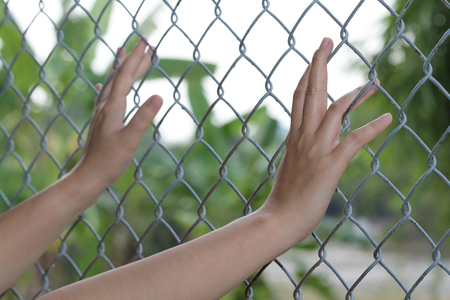 Hand catch cage  want to go outside . Outside  have nature. Standard-Bild - 115917310