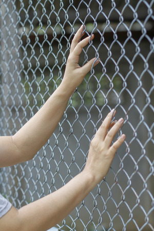 Hand catch cage  want to go outside . Standard-Bild - 121739960