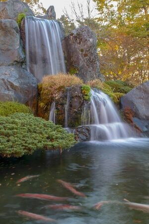 Close up beautiful waterfall and forest change color leaf  in autumn at japan .