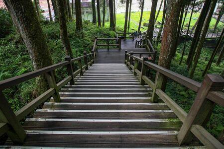 La passerelle en bois dans la forêt d'Alishan au parc national d'Alishan, à Taiwan