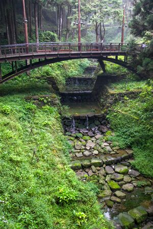 The wood bridge in forest at alishan,taiwan