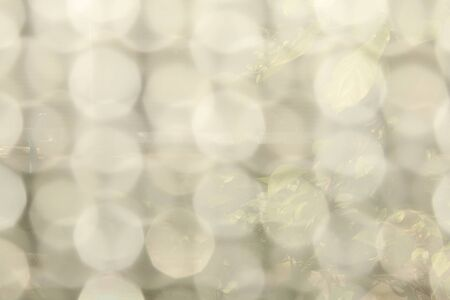 white bokeh is beautiful have nature background Stock Photo