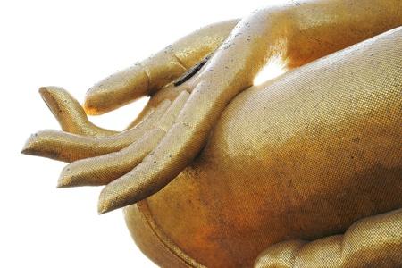 budda: fingers of seated Budda image
