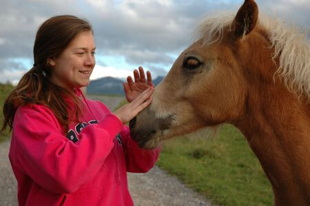 Teenage girl petting fole Stock Photo
